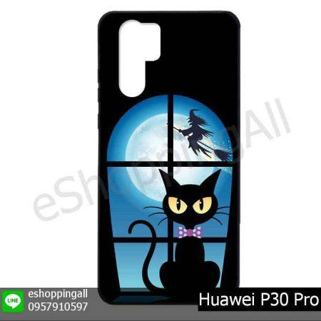 MHW-022A114 Huawei P30 Pro เคสมือถือหัวเหว่ยแบบยางพิมพ์ลาย